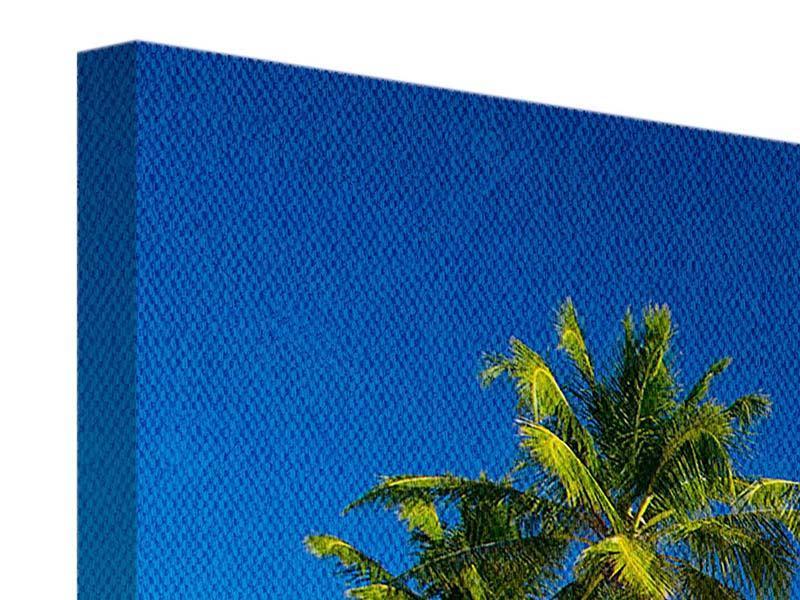 Panorama Leinwandbild 3-teilig Aloha