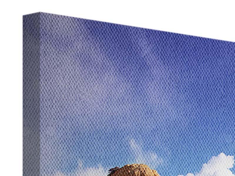 Panorama Leinwandbild 3-teilig Strandgedanken