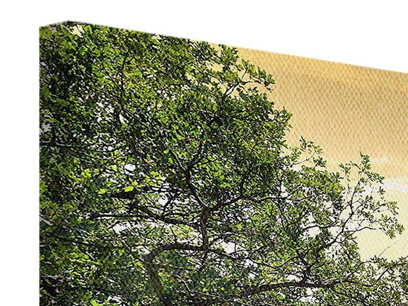 Panorama Leinwandbild 3-teilig Am Ende des Waldes