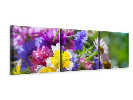 Panorama Leinwandbild 3-teilig XXL Gartenblumen