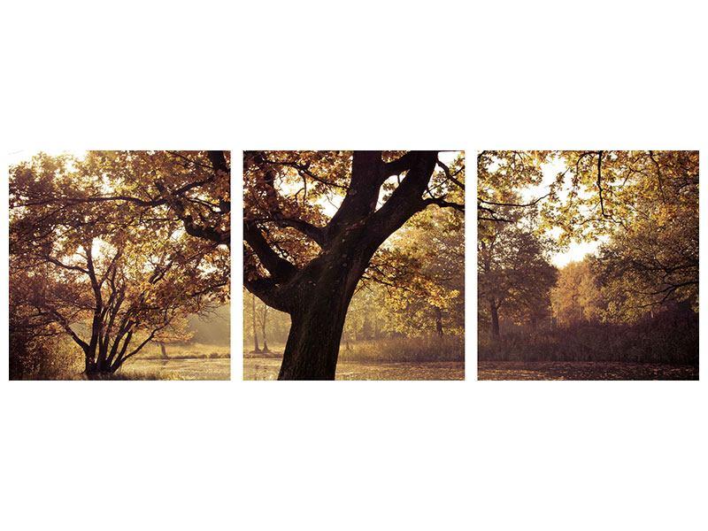Panorama Leinwandbild 3-teilig Landschaftspark