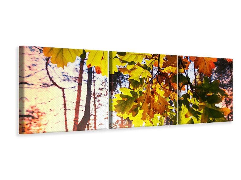 Panorama Leinwandbild 3-teilig Herbst