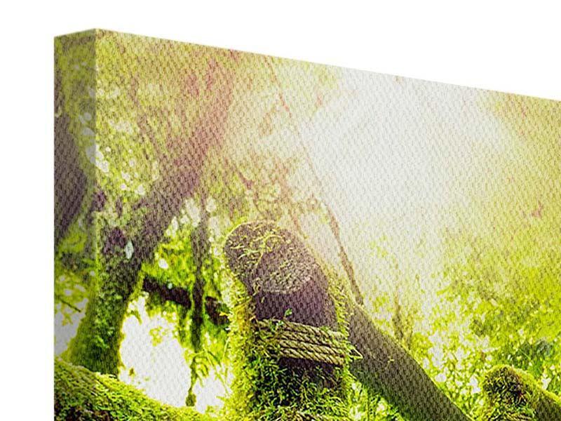 Panorama Leinwandbild 3-teilig Moos