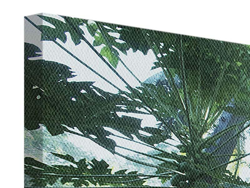 Panorama Leinwandbild 3-teilig Dschungelstar