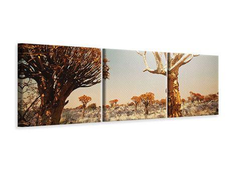 Panorama Leinwandbild 3-teilig Afrikanische Landschaft
