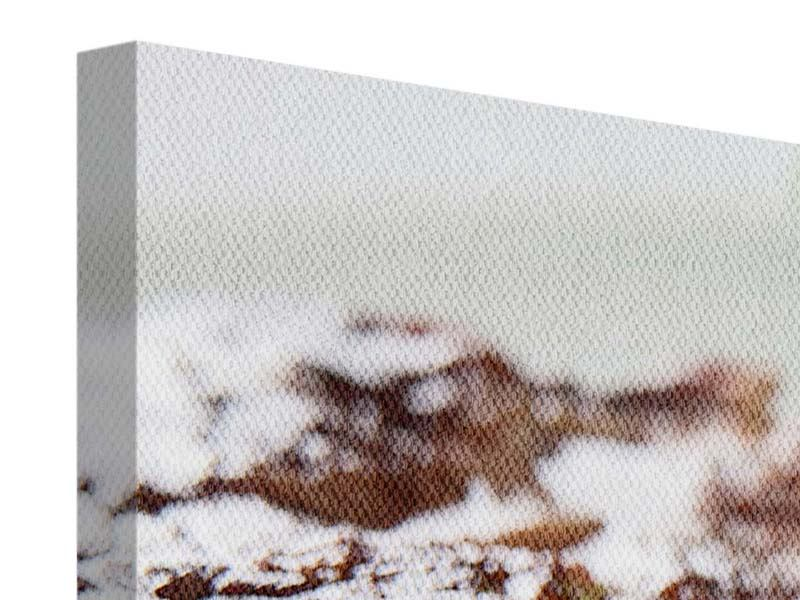 Panorama Leinwandbild 3-teilig Perfektes Rindsfilet