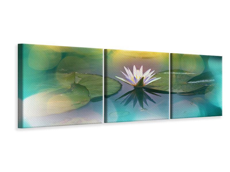 Panorama Leinwandbild 3-teilig Lotus-Spiegelung