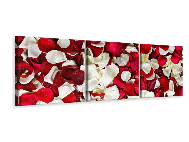Panorama Leinwandbild 3-teilig Rosenblätter