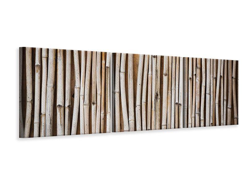 Panorama Leinwandbild 3-teilig Getrocknete Bambusrohre