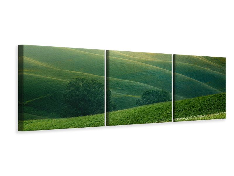 Panorama Leinwandbild 3-teilig Toskana
