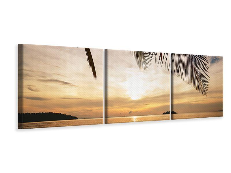 Panorama Leinwandbild 3-teilig Strandpalme
