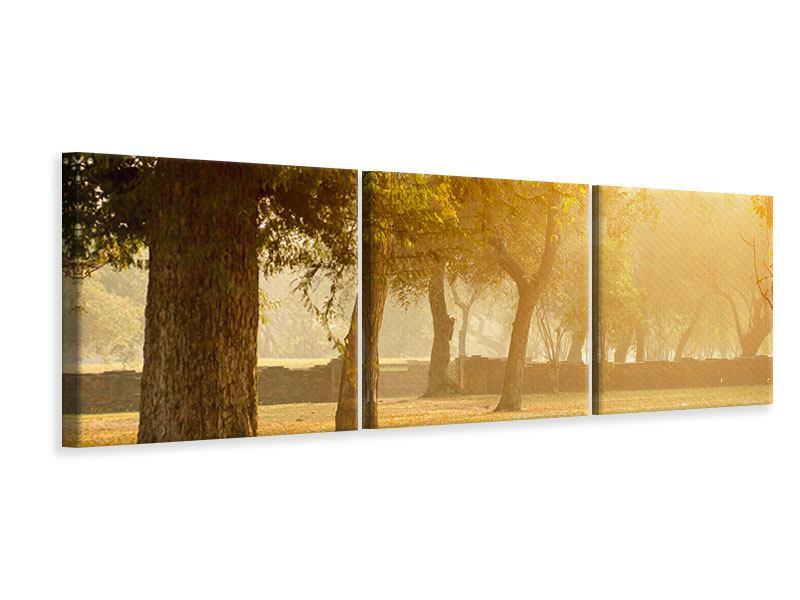 Panorama Leinwandbild 3-teilig Romantik unter Bäumen