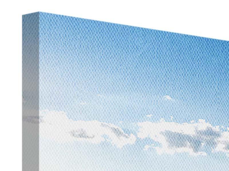 Panorama Leinwandbild 3-teilig Die Möwen und das Meer