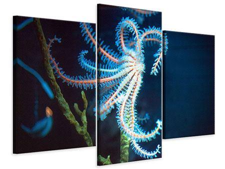 Leinwandbild 3-teilig modern Aquarium