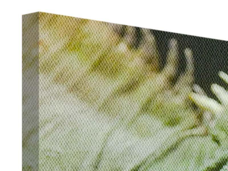 Leinwandbild 3-teilig modern XXL Leguan