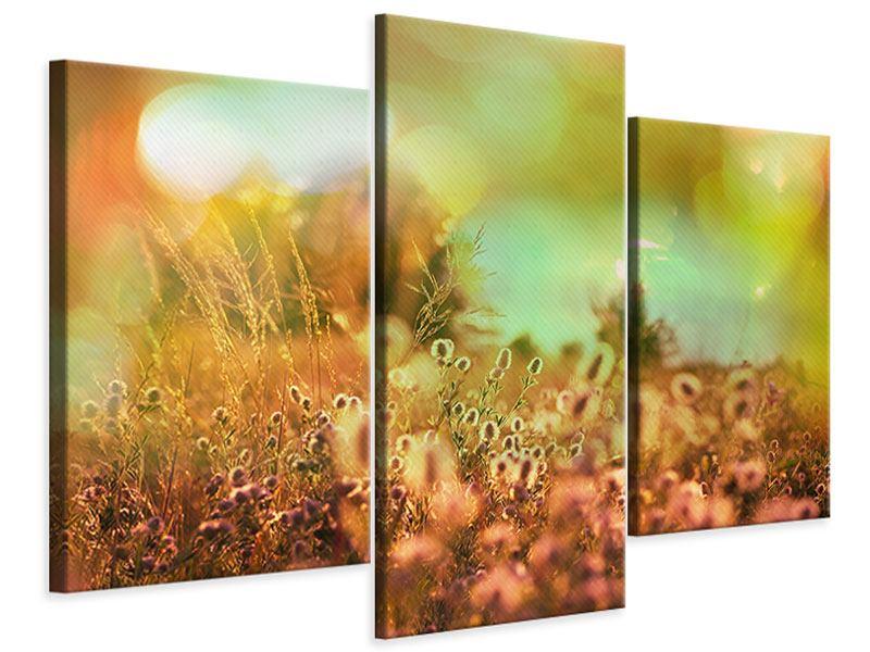 Leinwandbild 3-teilig modern Blumenwiese in der Abenddämmerung