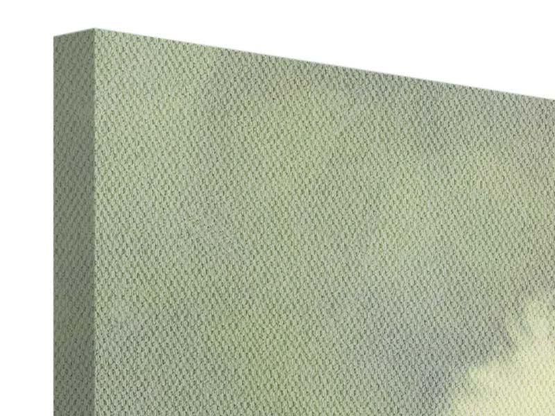 Leinwandbild 3-teilig modern Die Pusteblume