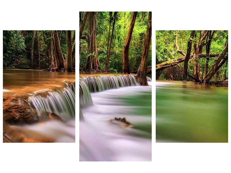 Leinwandbild 3-teilig modern Deep Forest