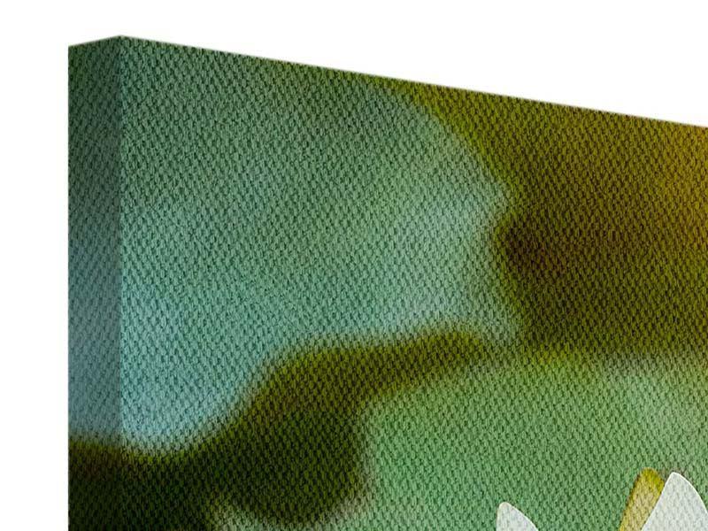 Leinwandbild 3-teilig modern Romantische Seerose