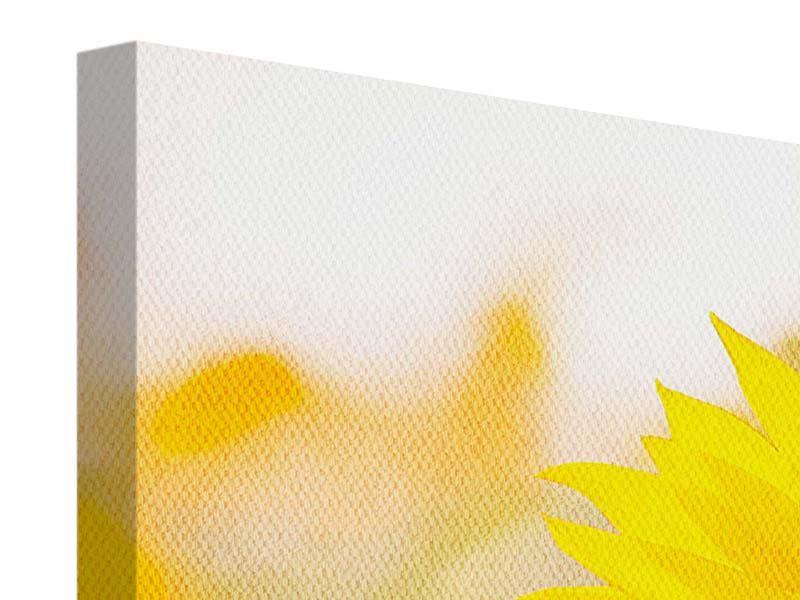 Leinwandbild 3-teilig modern Sunflower