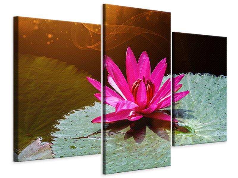 Leinwandbild 3-teilig modern Der Frosch und das Seerosenblatt