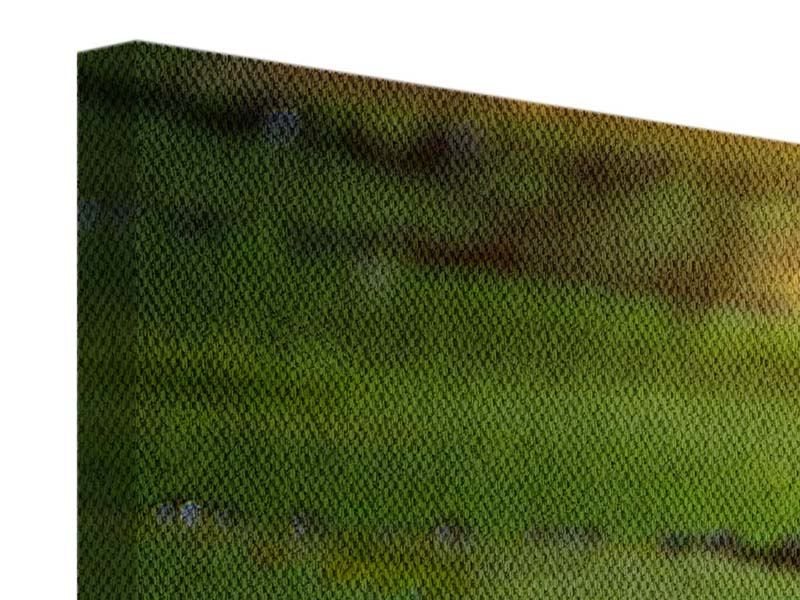 Leinwandbild 3-teilig modern Lilienspiegelung