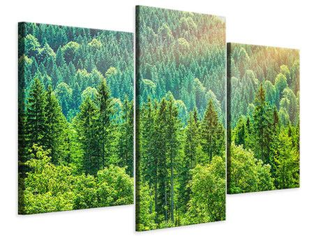 Leinwandbild 3-teilig modern Der Waldhügel