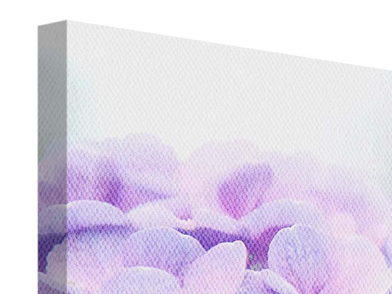 Leinwandbild 3-teilig modern Hortensien