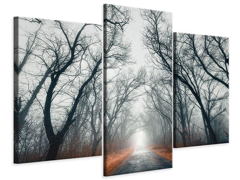 Leinwandbild 3-teilig modern Mysteriöse Stimmung im Wald