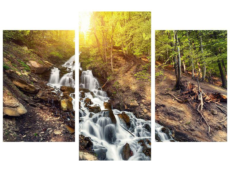 Leinwandbild 3-teilig modern Naturschönheit