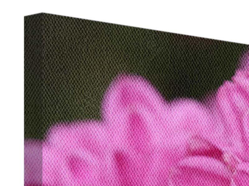 Leinwandbild 3-teilig modern Chrysanthemen