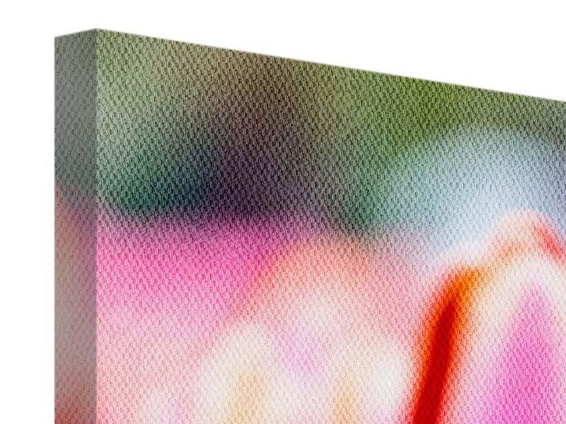Leinwandbild 3-teilig modern Pretty in Pink