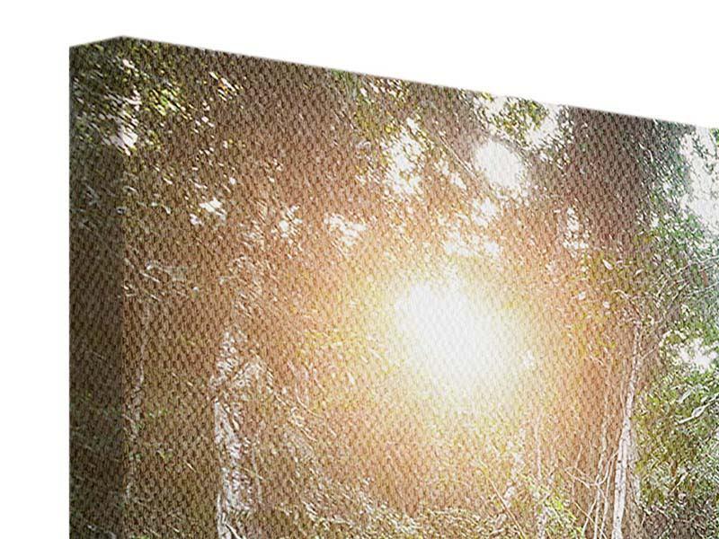 Leinwandbild 3-teilig modern Naturschauspiel
