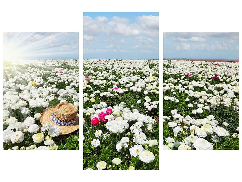 Leinwandbild 3-teilig modern Die Frühlingsblumenwiese
