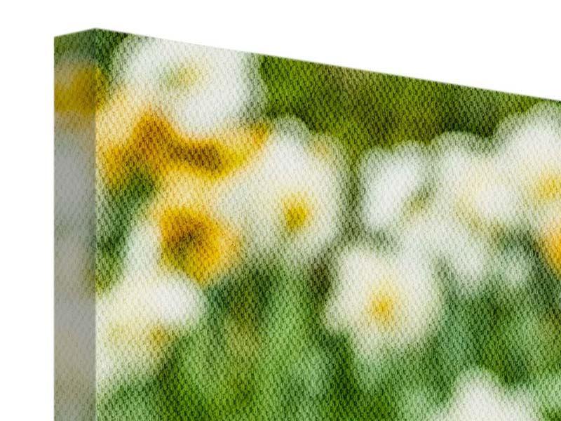 Leinwandbild 3-teilig modern Ein Garten mit Tulpen