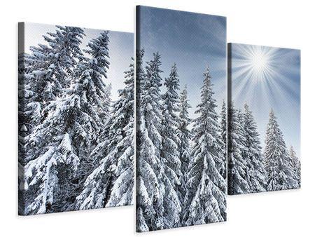 Leinwandbild 3-teilig modern Wintertannen