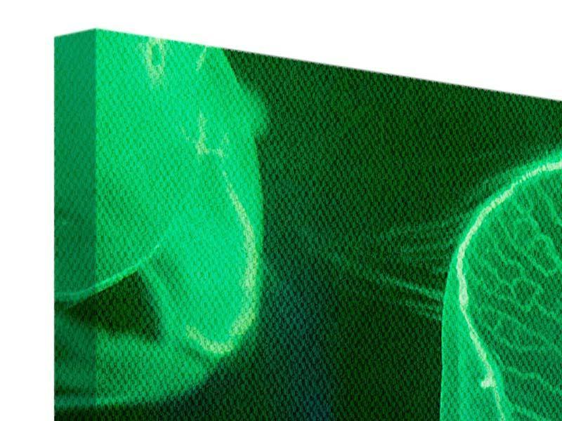 Leinwandbild 3-teilig modern Quallen im Licht