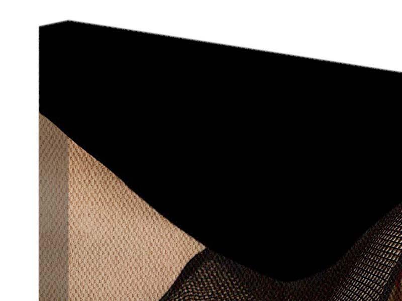 Leinwandbild 3-teilig modern Strapse