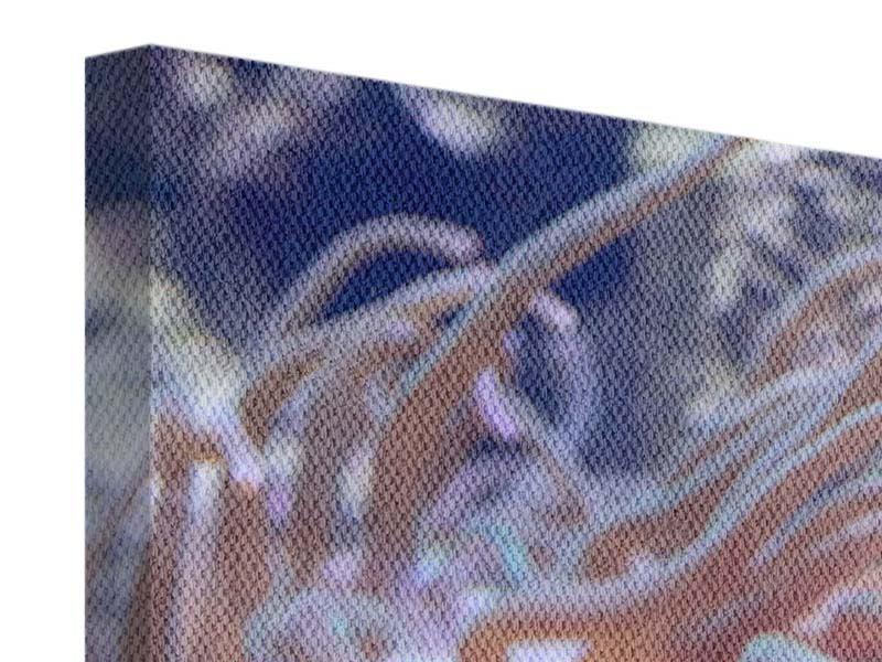 Leinwandbild 3-teilig modern Korallenriff
