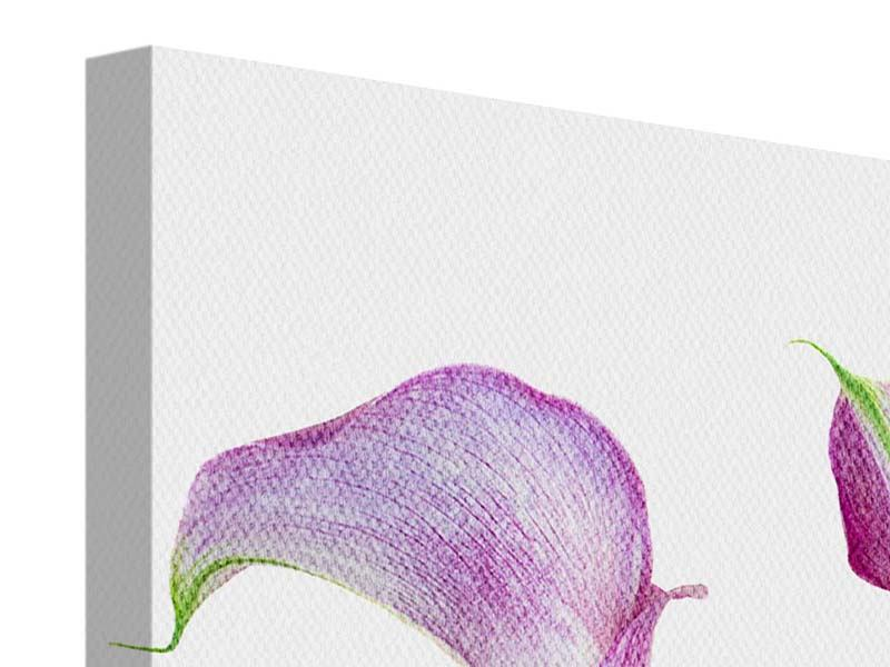 Leinwandbild 3-teilig modern Callas in Lila