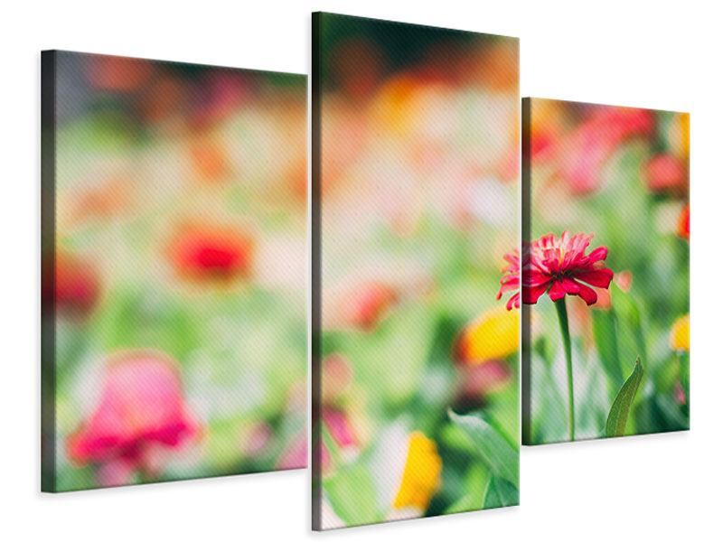 Leinwandbild 3-teilig modern Im Blumengarten