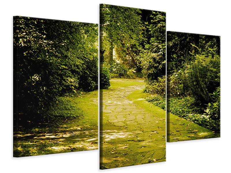 Leinwandbild 3-teilig modern Der bemooste Weg