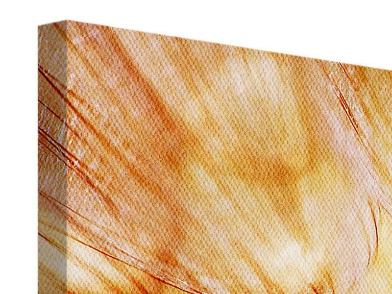 Leinwandbild 3-teilig modern Close Up Pusteblume im Licht