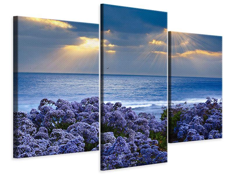 Leinwandbild 3-teilig modern Der Lavendel und das Meer