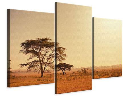 Leinwandbild 3-teilig modern Weideland in Kenia