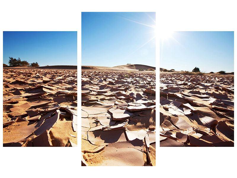 Leinwandbild 3-teilig modern Dürre