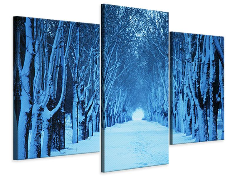 Leinwandbild 3-teilig modern Winterbäume
