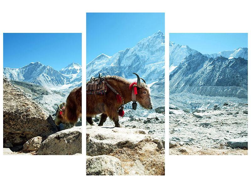 Leinwandbild 3-teilig modern Das Himalaya-Gebirge