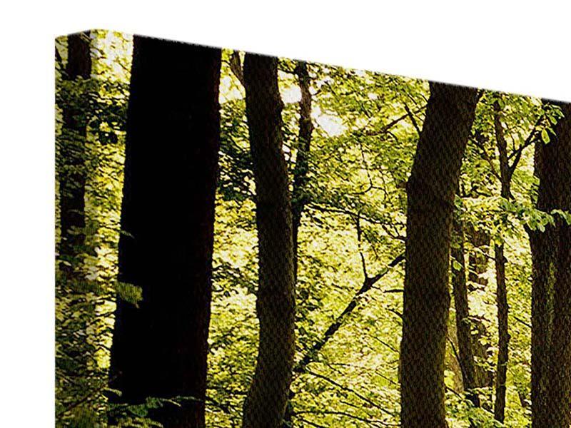 Leinwandbild 3-teilig modern Sonnenaufgang im Wald