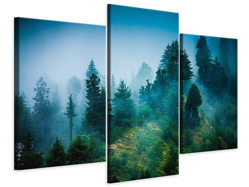 Leinwandbild 3-teilig modern Geheimnisvoller Wald